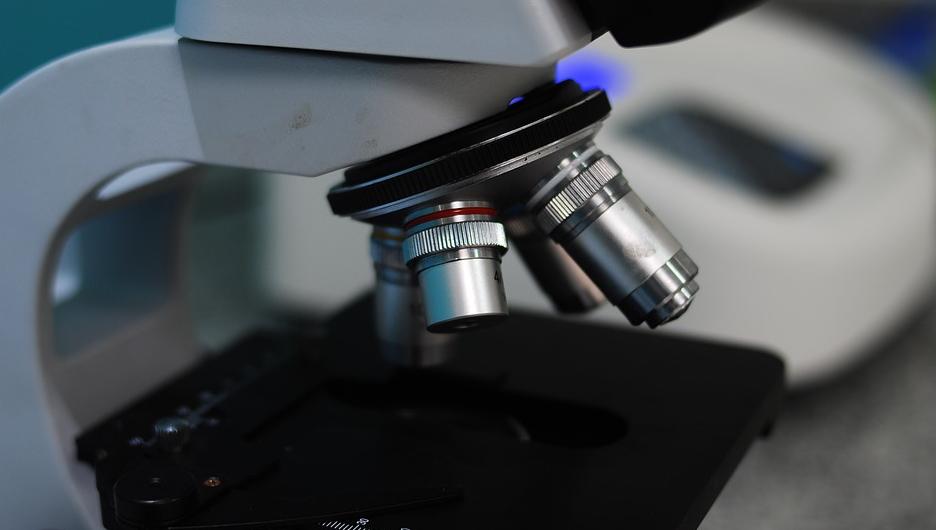 Wer sich schon früh für Naturwissenschaft begeistern kann, der kann ein Mikroskop kaufen